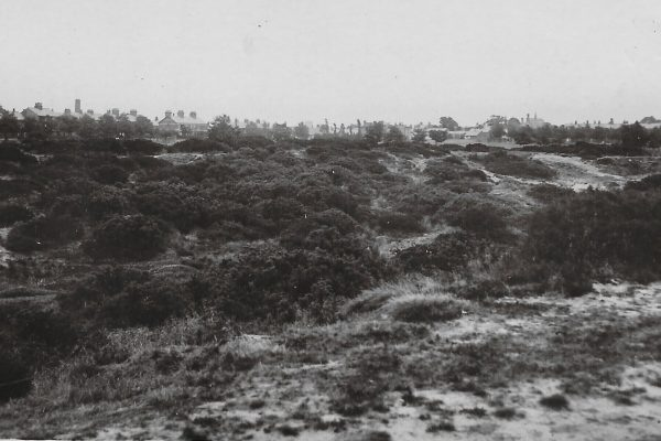 Knutsford Heath
